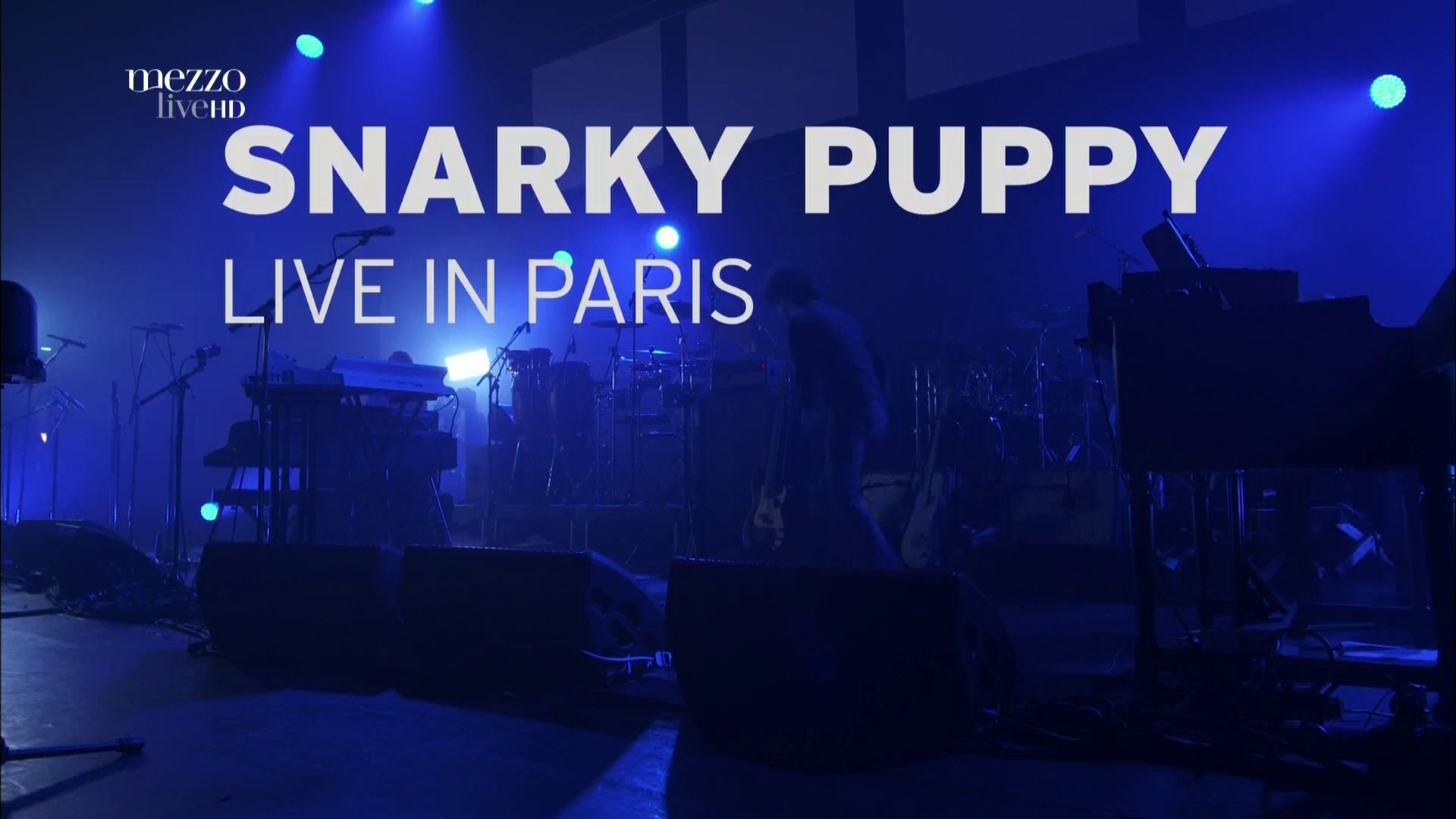 2017 Snarky Puppy - Live In Paris [HDTV 1080i] 0