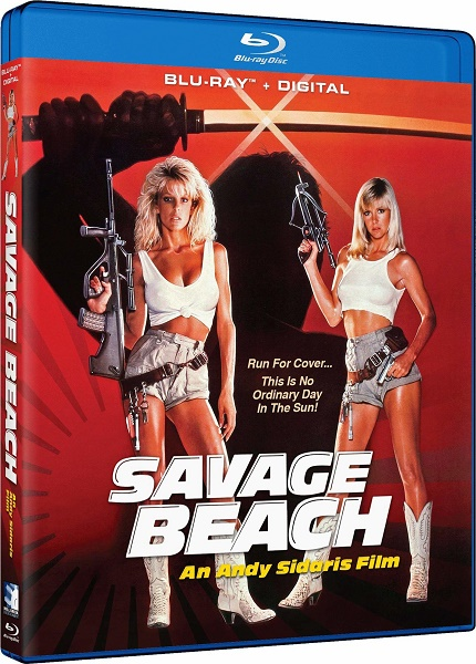 Дикий пляж / Savage Beach (1989) DVDRip | A